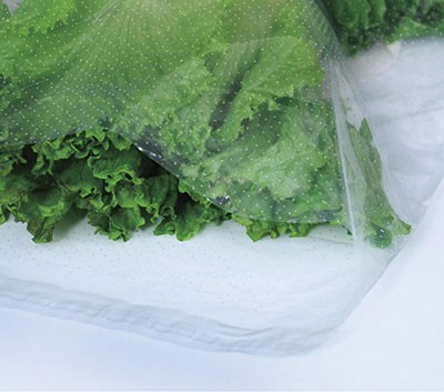 """12"""" x 16"""" Low Density Microperforated Resealable Bags - 24 Holes/PSI (1.5 mil)"""