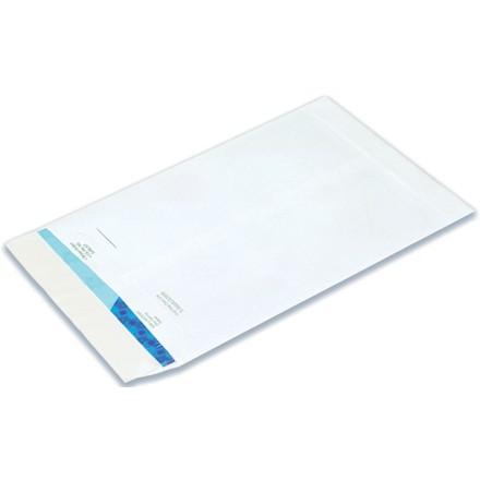 Flat Ship-Lite Envelopes